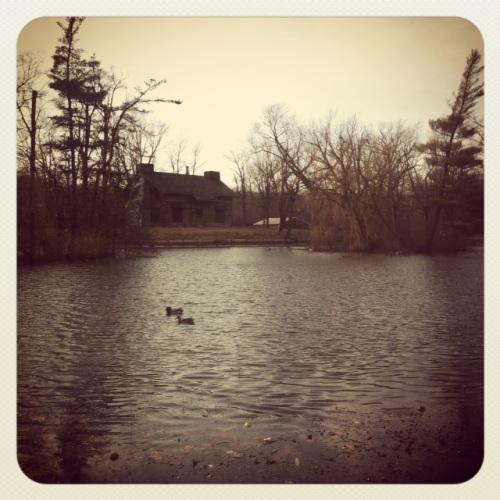 lake-frances