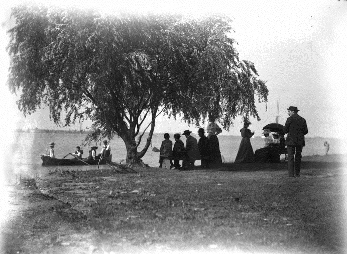 belle-isle-willow-tree-1893